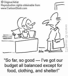 household budget cartoon
